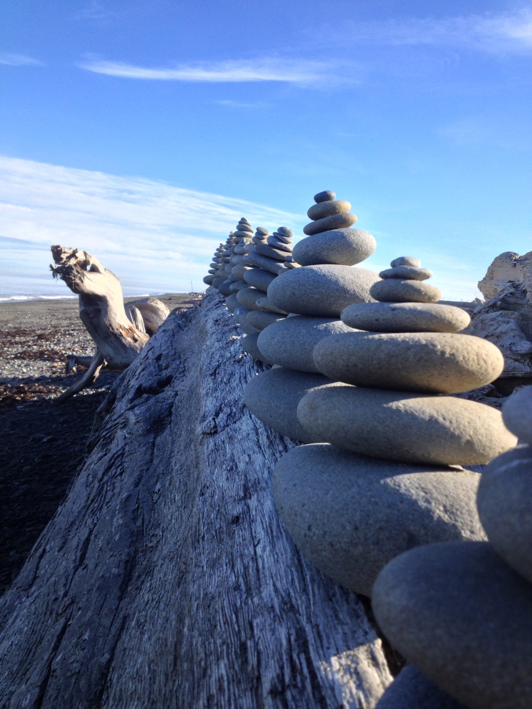 Beach art - Dungeness Spit