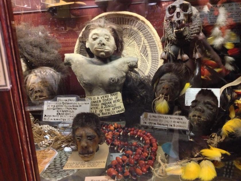 Shrunken heads and torso in the Ye Olde Curiosity Shop