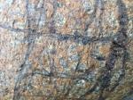Patterns on a rock