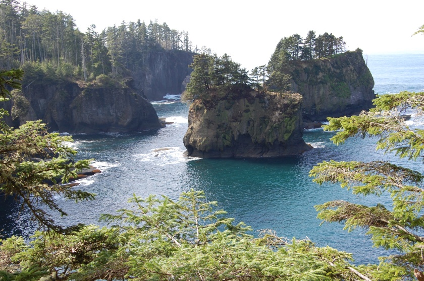 View from one of the overlooks on the trail looking south toward the Pacific Ocean - Cape Flattery trail, Neah Bay, WA