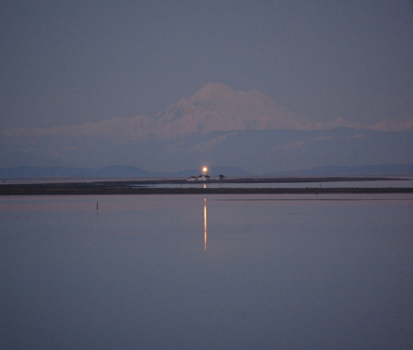 New Dungeness Light Station with Mt. Baker in the Background - Dungeness Spit, Washington