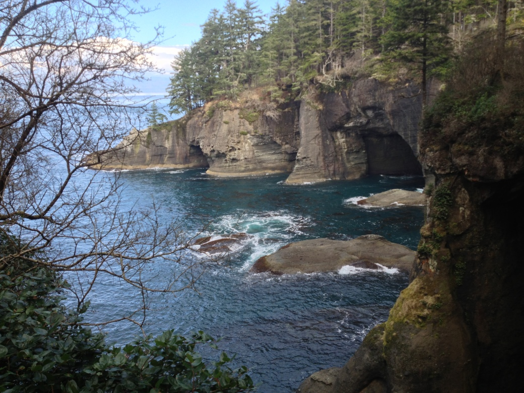 View from one of the overlooks on the trail looking north across the Strait of San Juan de Fuca toward Vancouver Island, British Columbia - Cape Flattery trail, Neah Bay, WA