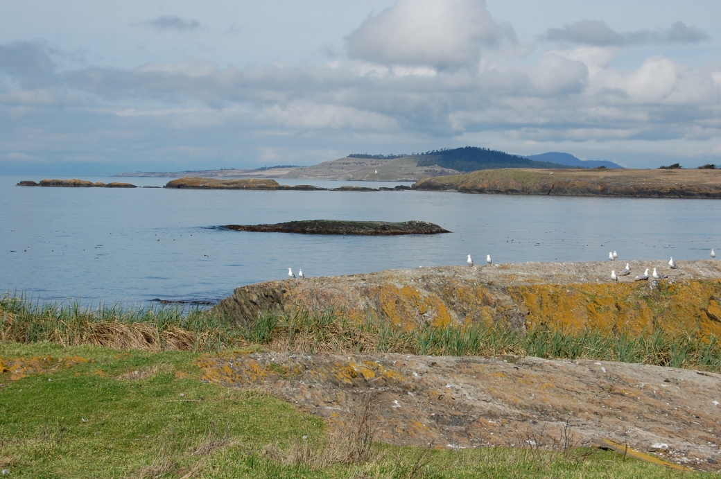 This is a view looking NW from Hall Island in the San Juan Islands National Wildlife Refuge.