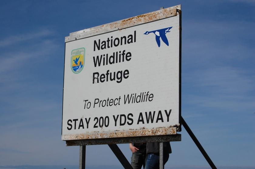 Sign We Put Up on Hall Island - San Juan Islands NWR, Washington