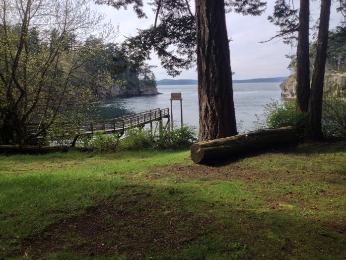 Campsite View of the Cove at Matia Island - San Juan Islands, NWR, Washington
