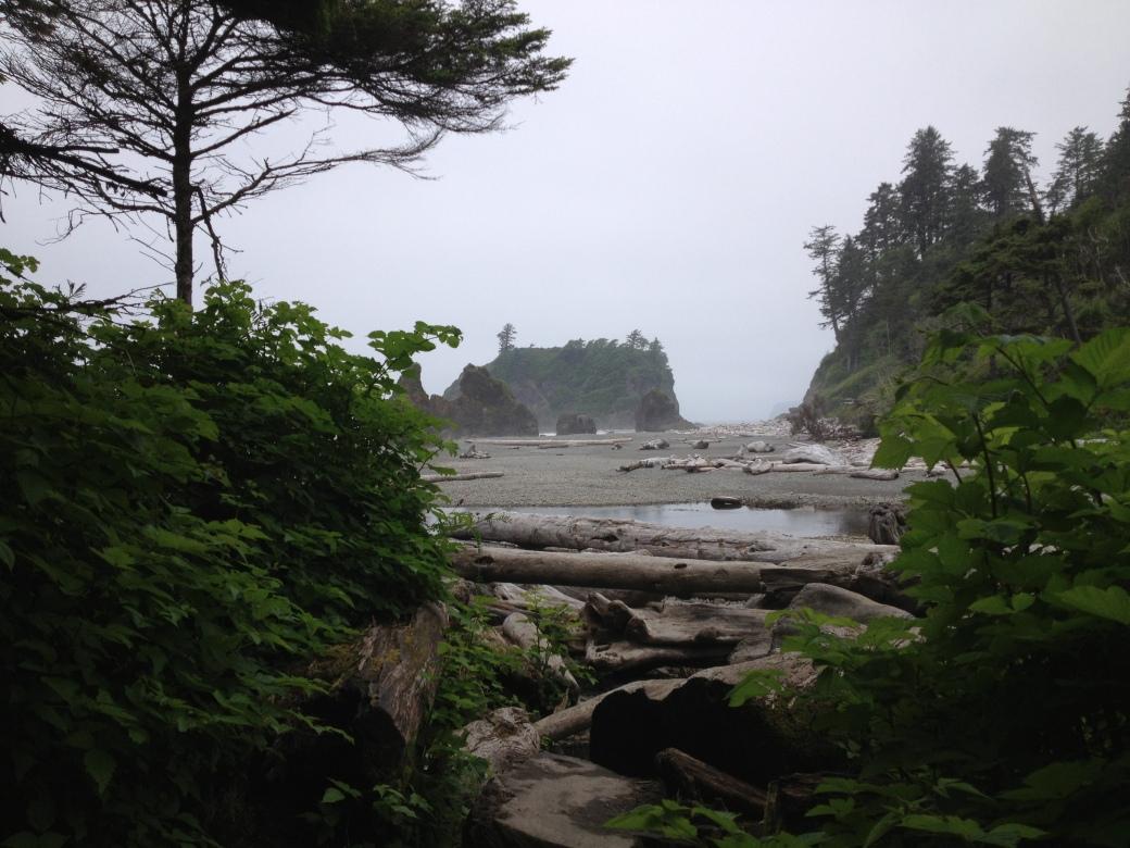Ruby Beach, Olympic National Park - Washington