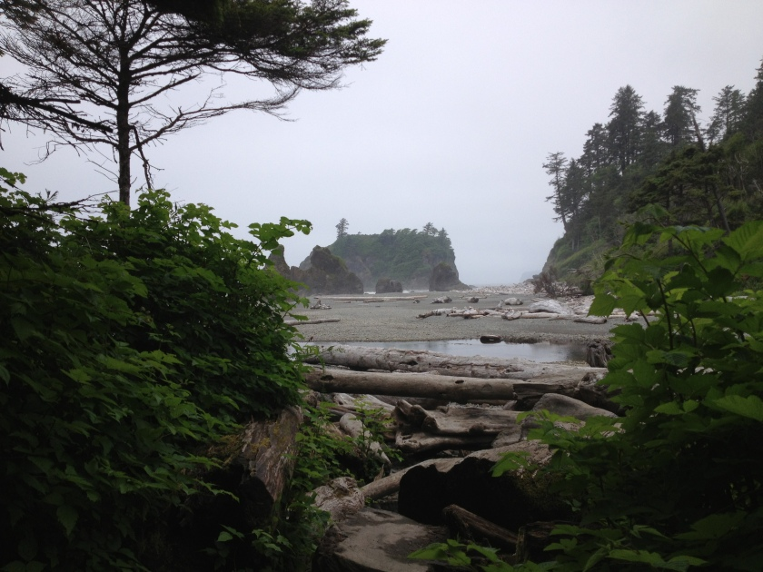 Ruby Beach, Olympic National Park - Washington