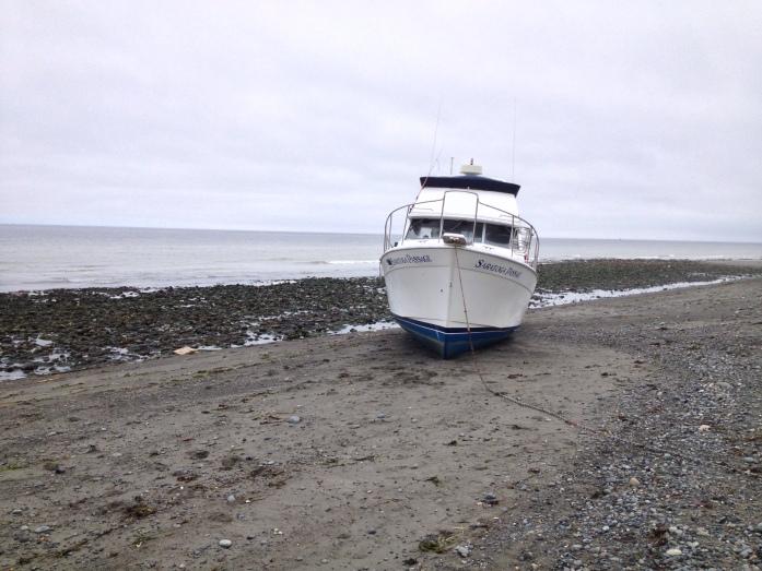 Stranded Boat on Dungeness Spit