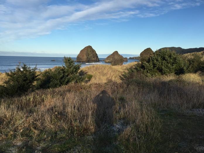 Along the Oregon coast on US 101