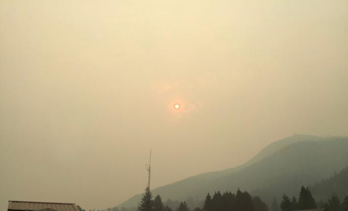 Morning Sun in the Smoke